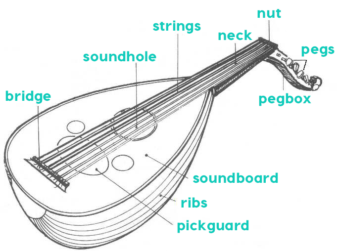parts of the oud
